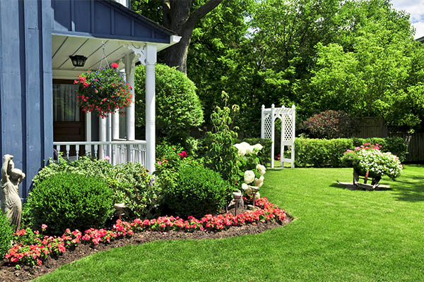 budget residential landscaping