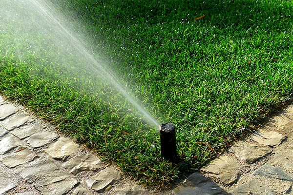 budget landscape lawn irrigation repair and installation