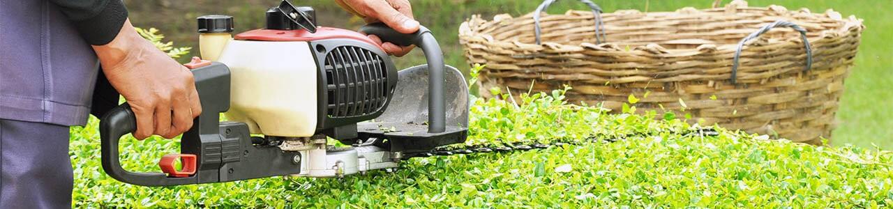 budget landscape complete yard maintenance services