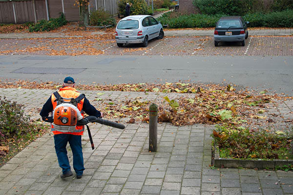 walkway cleaning leaf blower services