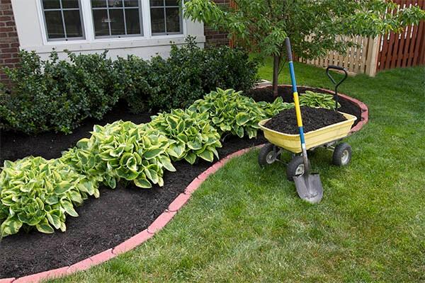 budget landscape garden mulch